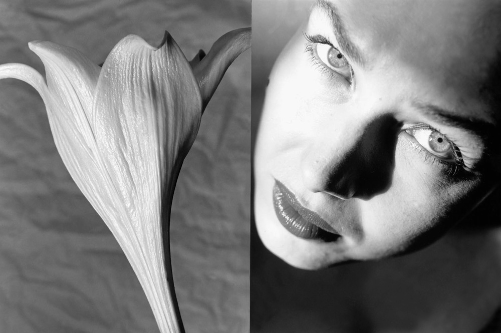 2-Lilie_Frauenportait-Buchillustration_BlÅtenweiss-bis-Rabenschwarz